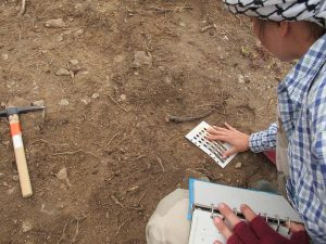 Kristen uses a Munsell colour chart to check soil colour