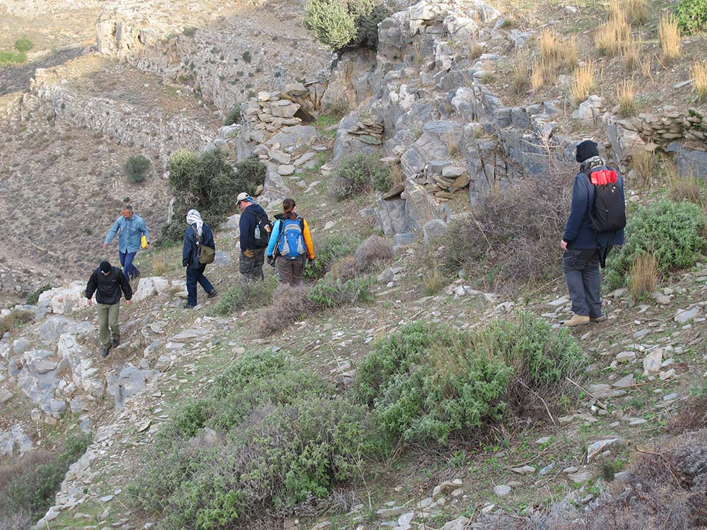 Team members walking down the steep slope to do a transect survey