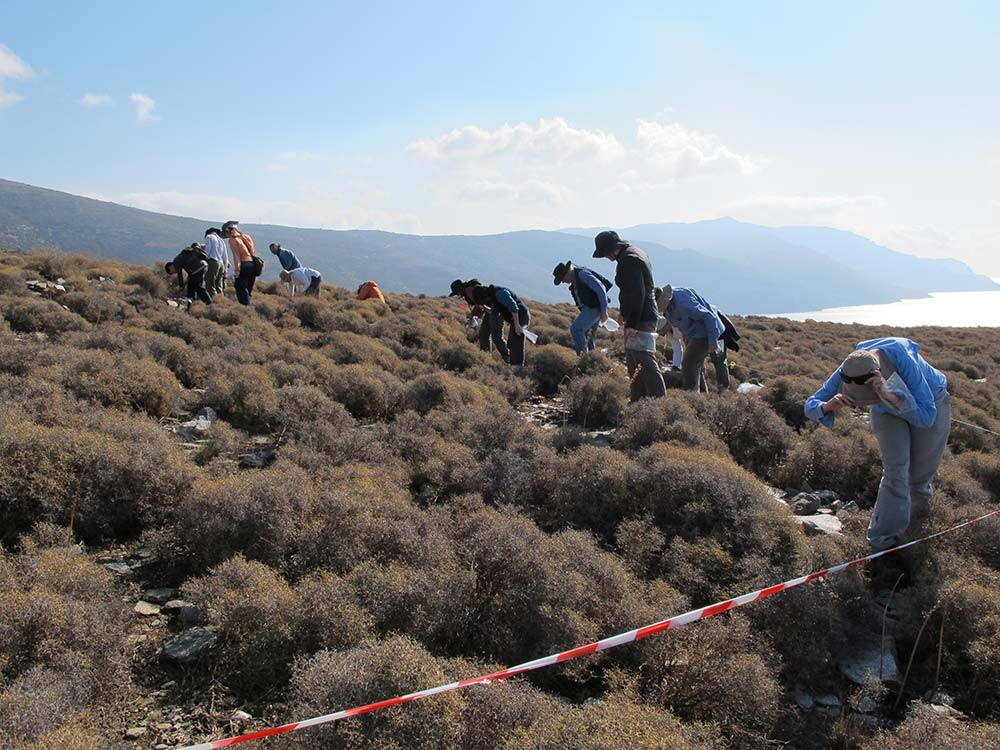 The team conducting archaeological surface survey