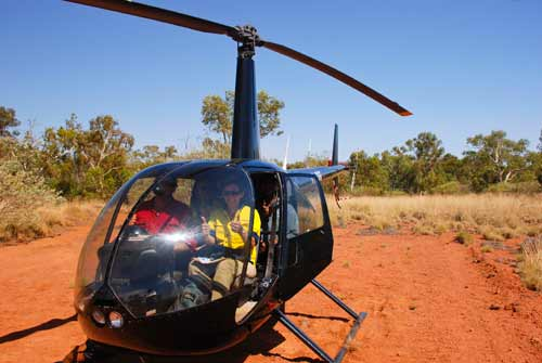 Guadalupe aboard a helicopter for survey work in Western Australia