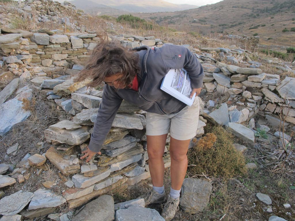 Stefie holds her original conservation plan as she considers one of the Zagora settlement walls excavated in the 1960s and 70s